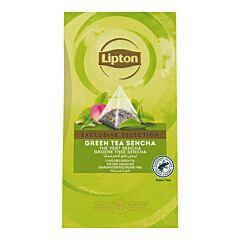 Lipton Exclusive selection tea sencha