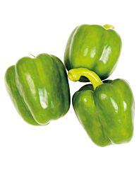 Paprika groen krat ca 5 kilo