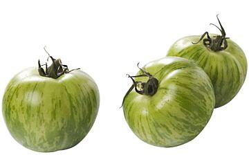 Tomaten tijger groen