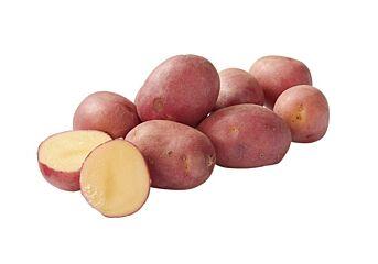 Aardappel roseval kriel