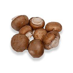 Kastanje champignons middel klasse 1