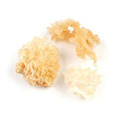 Cauliflower mushroom (bloem paddenstoel) ds 1 kg