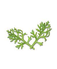 Koppert cress Kikuna leaves  specialties